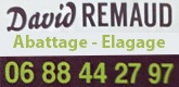 Elagage David Remaud
