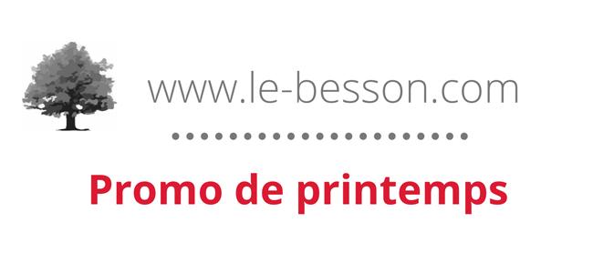 Promotion de printemps chez Besson