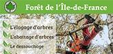 Forêt de l'Ile-de-France