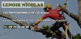 – Lenoir Nicolas –