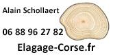 Schollaert-Alain
