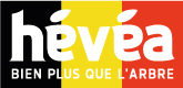– Hévéa Belgique –