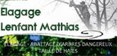 – Elagage Lenfant Mathias –